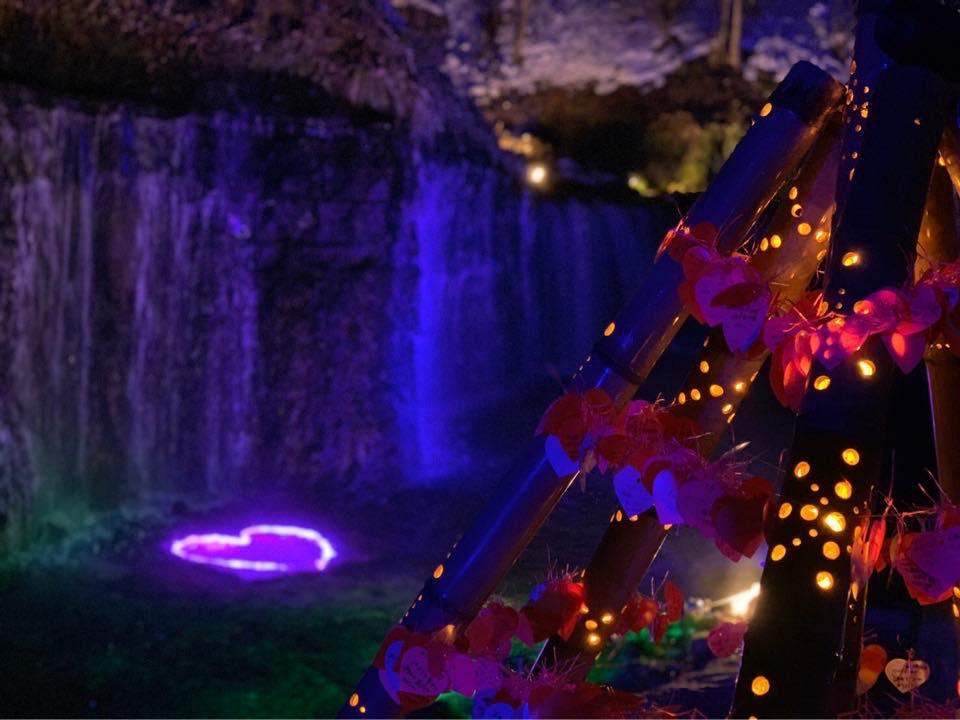 冬の白糸の滝はライトアップ☆彡